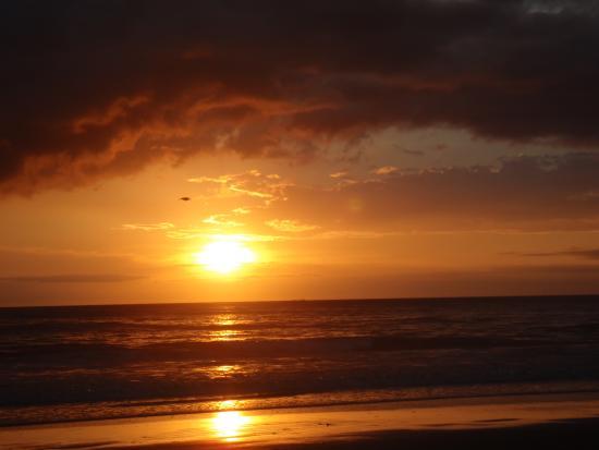 Mini Mop Surf Shop: Playa Grande Sunset