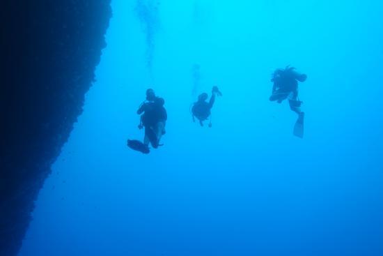 Diveaway Fiji