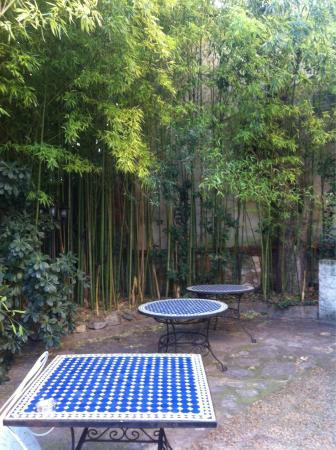 Hotel Acapulco: Jardin
