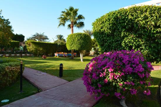 Nubian Island Hotel: зона отдыха и игры в аэрохоккей