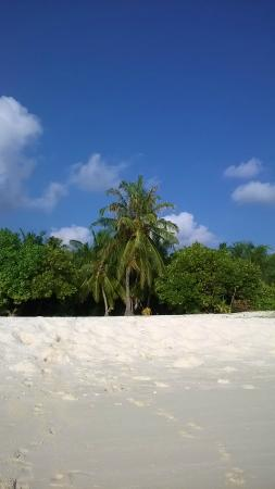 Kuri Inn: la spiaggia