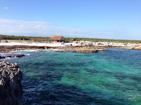 Ernesto's Rental: On top of coral structure at El Mirador