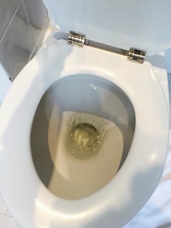Des Ducs d'Anjou : toilette HS