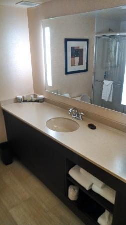 Embassy Suites North Shore / Deerfield: Bathroom