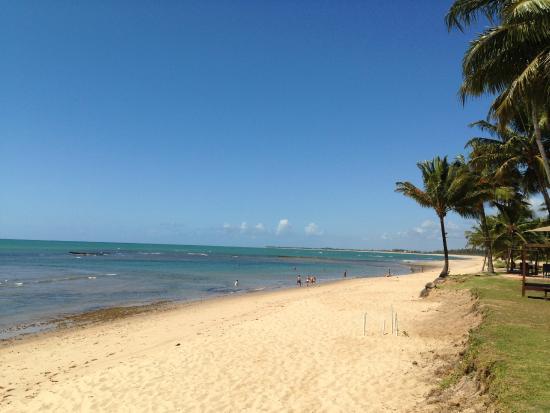 Tivoli Ecoresort Praia do Forte: Praia em frente ao hotel