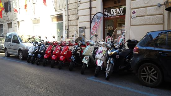 ‪My Scooter Rent in Rome‬