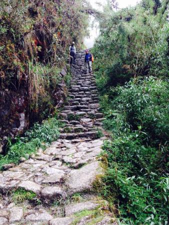 Tierras Vivas: Inca trail(3rd day)