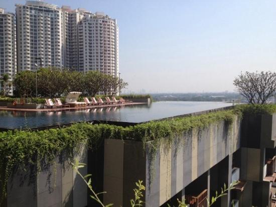 Infinity Pool On 7th Floor Picture Of Hotel Indigo