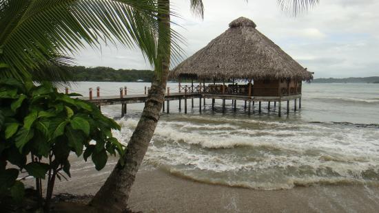 Playa Tortuga Hotel & Beach Resort: RESTAURANTE SOBRE EL MAR