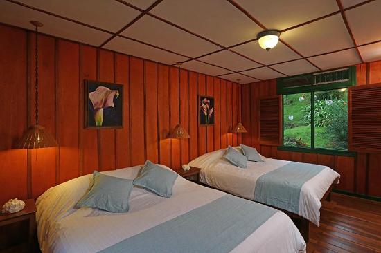 Trogon Lodge San Gerardo de Dota: Standard room with one double and one single bed