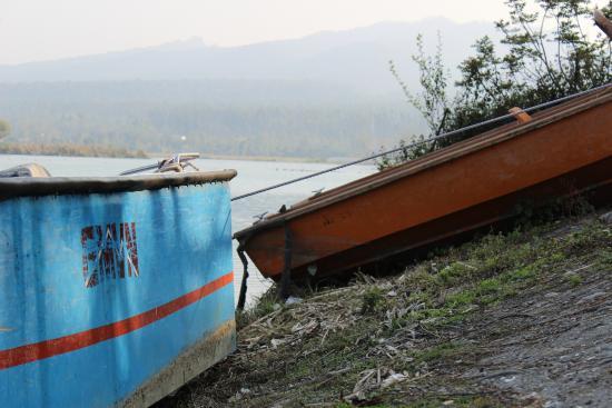 Tourist Rest House Assan GMVN: Abandoned Boats
