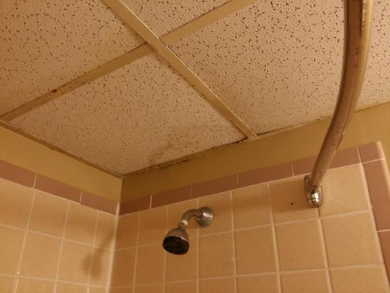 Econo Lodge Mystic - Groton: Bathroom ceiling...