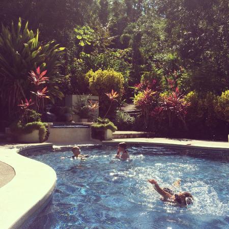 Star Mountain Jungle Lodge: Pool, hidden in the jungle