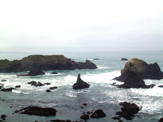 Fort Bragg Coastal Trail