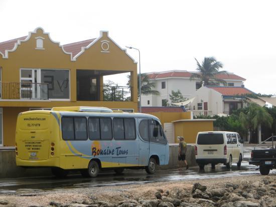 Flamingo Sanctuary: the bus tour