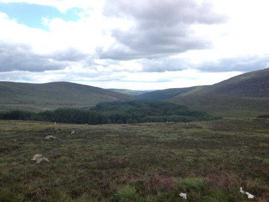 Wicklow Mountains Tour: Lindo!
