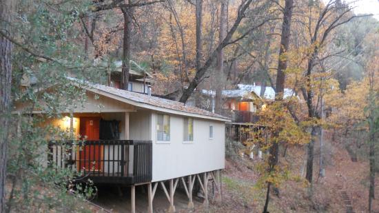Yosemite Bug Rustic Mountain Resort Ab 53 7̶0̶ ̶