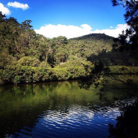 Ku-ring-gai Chase National Park: Beautiful scenery