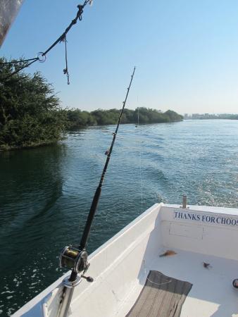 Bibi Fleet Sportfishing: Fishing Poles Out