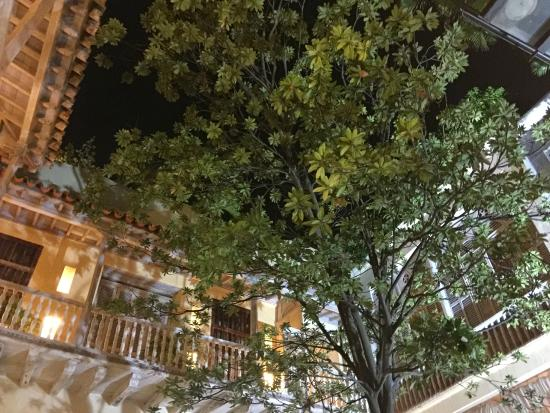 Casa Pombo : Tree in central court with view of colonial-style second floor