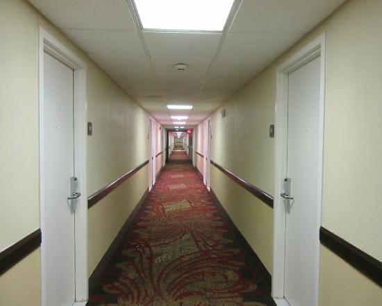 BEST WESTERN Richmond Hotel : hallway