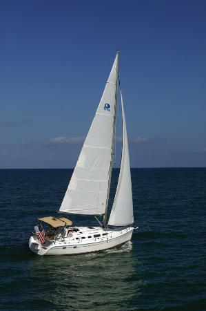 Newport Beach Sailing Charters Day Tours All You Need To Know Before Go With Photos Tripadvisor