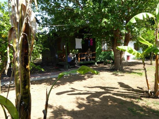 Kiyi Pansiyon: Cabins