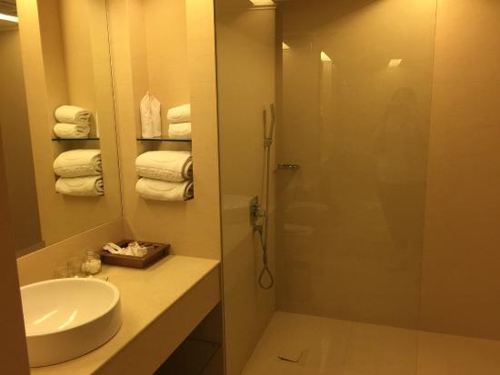 The Emerald Hotel: super big bathroom, but not bath tub