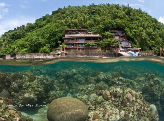 Portulano Dive Resort: Portulano Resort is in a quiet location