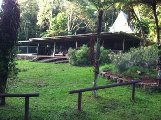 Chambers Wildlife Rainforest Lodges: The main recreation area.