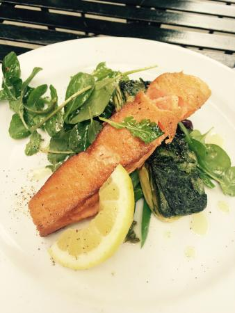 Bella's Cafe : Salmon and Salad