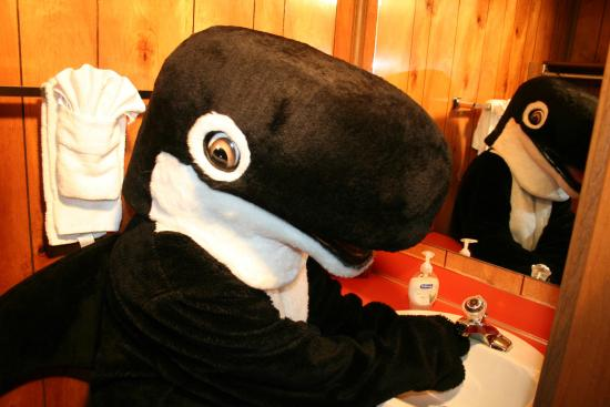 The Orca Inn: Cleaning up at the sink