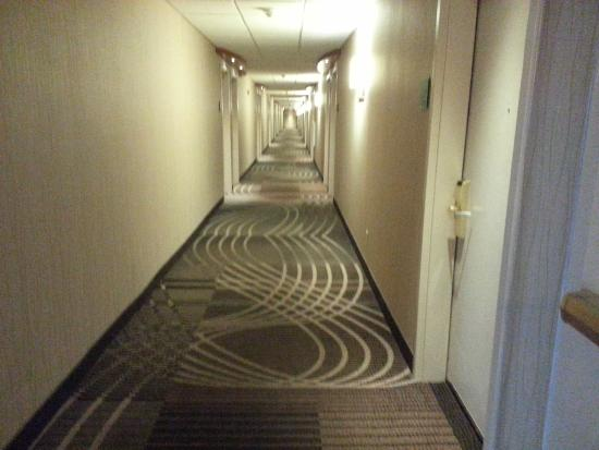Doubletree by Hilton Hotel Akron - Fairlawn : Hallway at the Doubletree Fairlawn