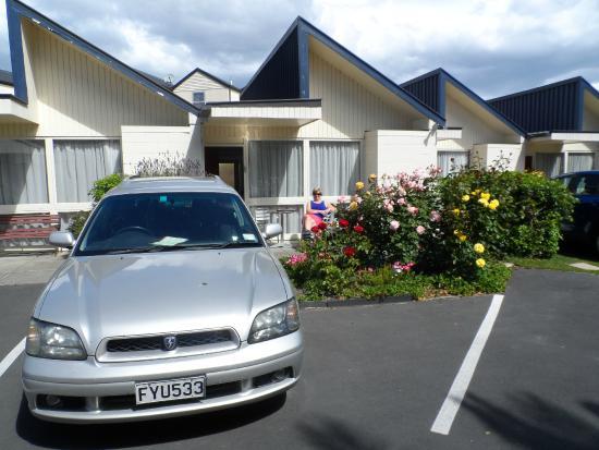 Diplomat Motel: Beautiful roses