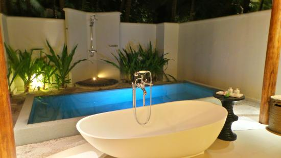 Private Pool Picture Of Dusit Thani Maldives Mudhdhoo