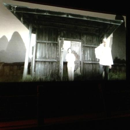 Chinese Museum: Video Presentation
