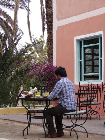 Au jardin de tamnougalt agdz marocko omd men och for Au jardin review
