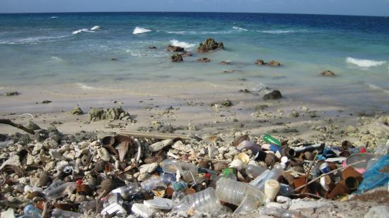 """Madhiriguraidhoo Island : Экскурсия на """"Остров рыбаков"""" . Печально,что местные жители  так засоряют свой родной остров !!!"""