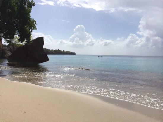 Punta West Bed & Breakfast Curacao: Strand fussläufig zum Hotel (5min)