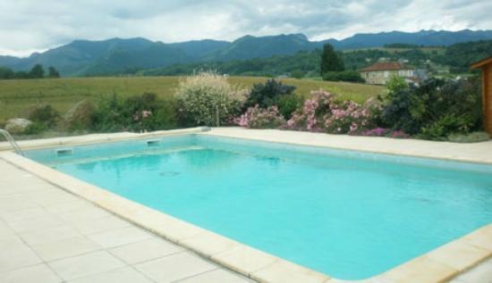 Anousta Chambres et Table d'Hotes a la Ferme : la piscine avec les Pyrénées en fond