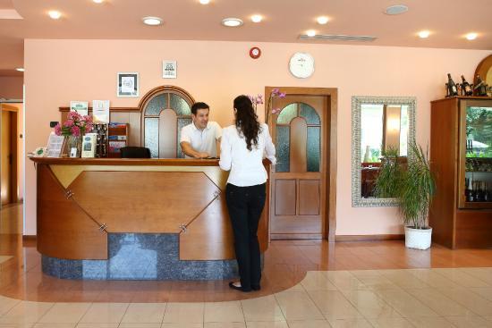 Hotel Benacus Malcesine: Reception