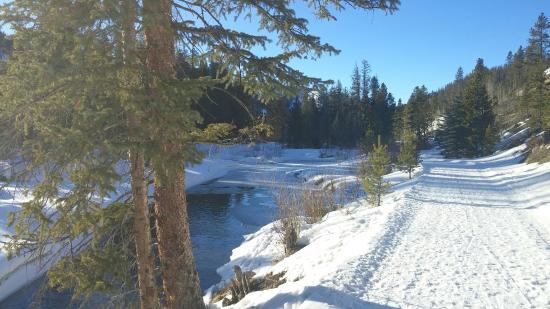The Fraser River Trail