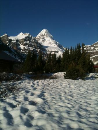 Assiniboine Lodge: view from the grounds
