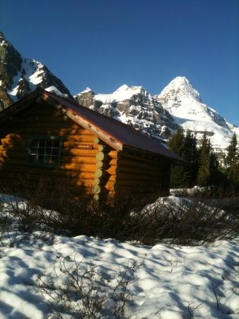 Assiniboine Lodge: this was my cabin