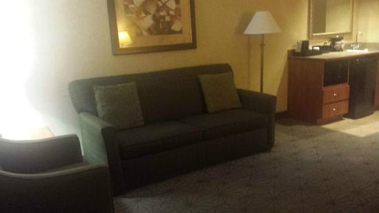 Embassy Suites by Hilton Columbia - Greystone : Living Room Area