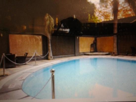 Hotel Vikram: Vista da piscina