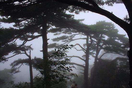 Mt Huaguoshan: .
