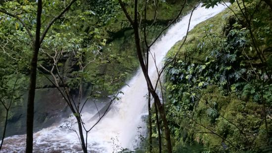 McLean Falls Upper Tier