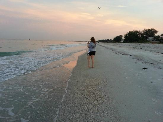Anna Maria Island Dream Inn: Sunrise