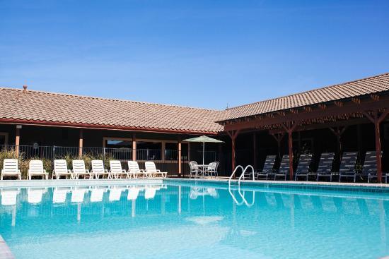 Wine Country RV Resort: Pool area